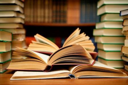 come studiare seo libri